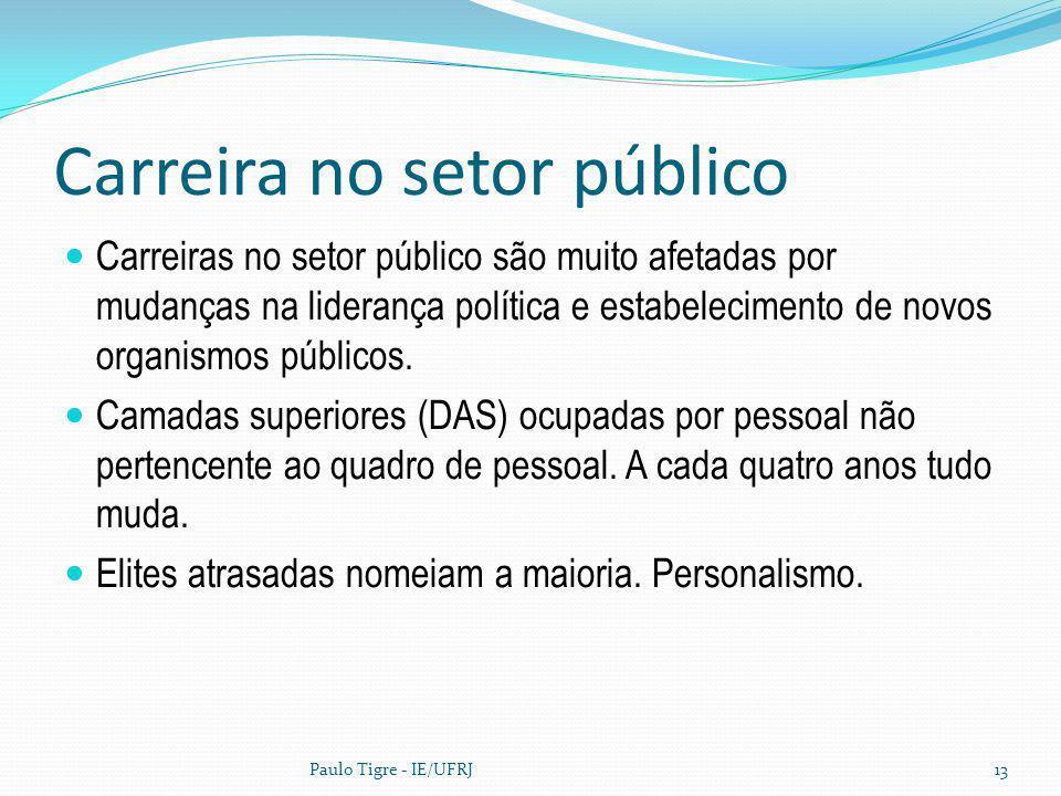 Carreira no setor público Carreiras no setor público são muito afetadas por mudanças na liderança política e estabelecimento de novos organismos públi
