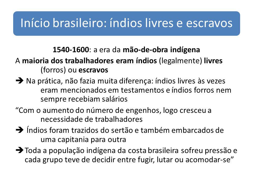 Início brasileiro: índios livres e escravos 1540-1600: a era da mão-de-obra indígena A maioria dos trabalhadores eram índios (legalmente) livres (forros) ou escravos Na prática, não fazia muita diferença: índios livres às vezes eram mencionados em testamentos e índios forros nem sempre recebiam salários Com o aumento do número de engenhos, logo cresceu a necessidade de trabalhadores Índios foram trazidos do sertão e também embarcados de uma capitania para outra Toda a população indígena da costa brasileira sofreu pressão e cada grupo teve de decidir entre fugir, lutar ou acomodar-se