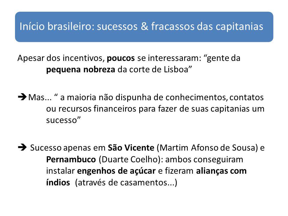 Início brasileiro: sucessos & fracassos das capitanias Apesar dos incentivos, poucos se interessaram: gente da pequena nobreza da corte de Lisboa Mas.