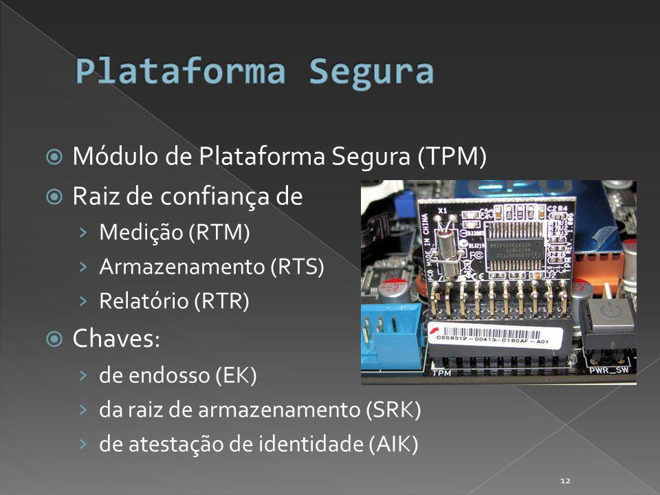 Módulo de Plataforma Segura (TPM) Raiz de confiança de Medição (RTM) Armazenamento (RTS) Relatório (RTR) Chaves: de endosso (EK) da raiz de armazenamento (SRK) de atestação de identidade (AIK) 12