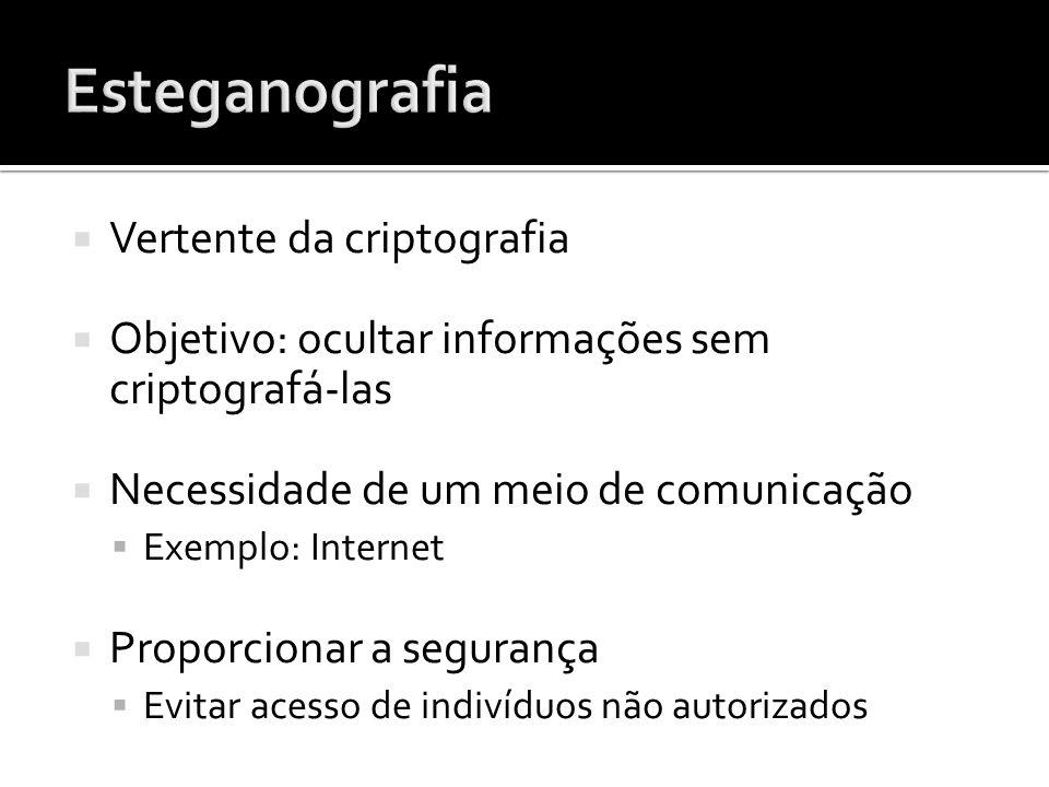 Vertente da criptografia Objetivo: ocultar informações sem criptografá-las Necessidade de um meio de comunicação Exemplo: Internet Proporcionar a segu