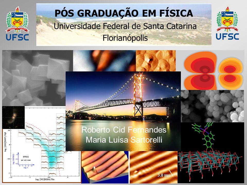 PÓS GRADUAÇÃO EM FÍSICA Universidade Federal de Santa Catarina Florianópolis Roberto Cid Fernandes Maria Luisa Sartorelli