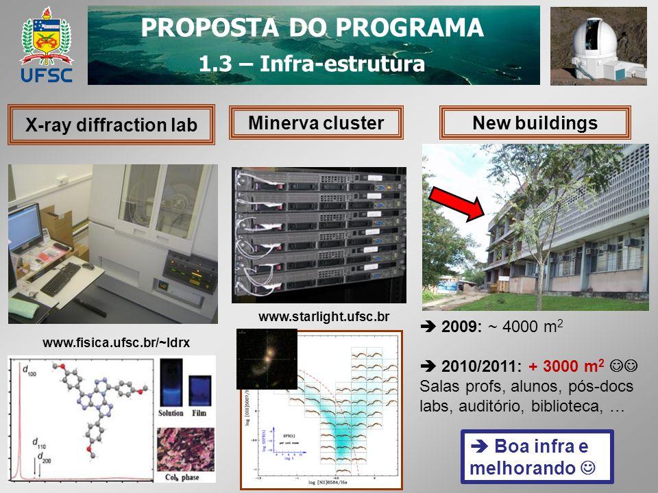 PROPOSTA DO PROGRAMA 1.3 – Infra-estrutura X-ray diffraction lab Minerva cluster www.fisica.ufsc.br/~ldrx www.starlight.ufsc.br New buildings 2009: ~