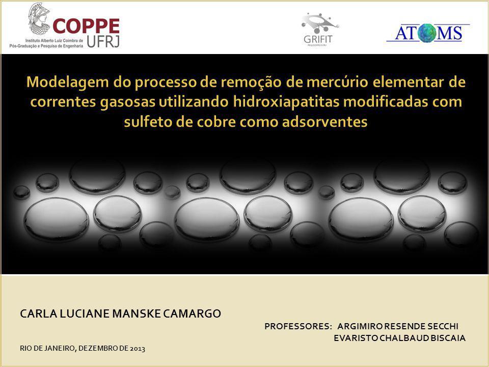 CARLA LUCIANE MANSKE CAMARGO PROFESSORES: ARGIMIRO RESENDE SECCHI EVARISTO CHALBAUD BISCAIA RIO DE JANEIRO, DEZEMBRO DE 2013