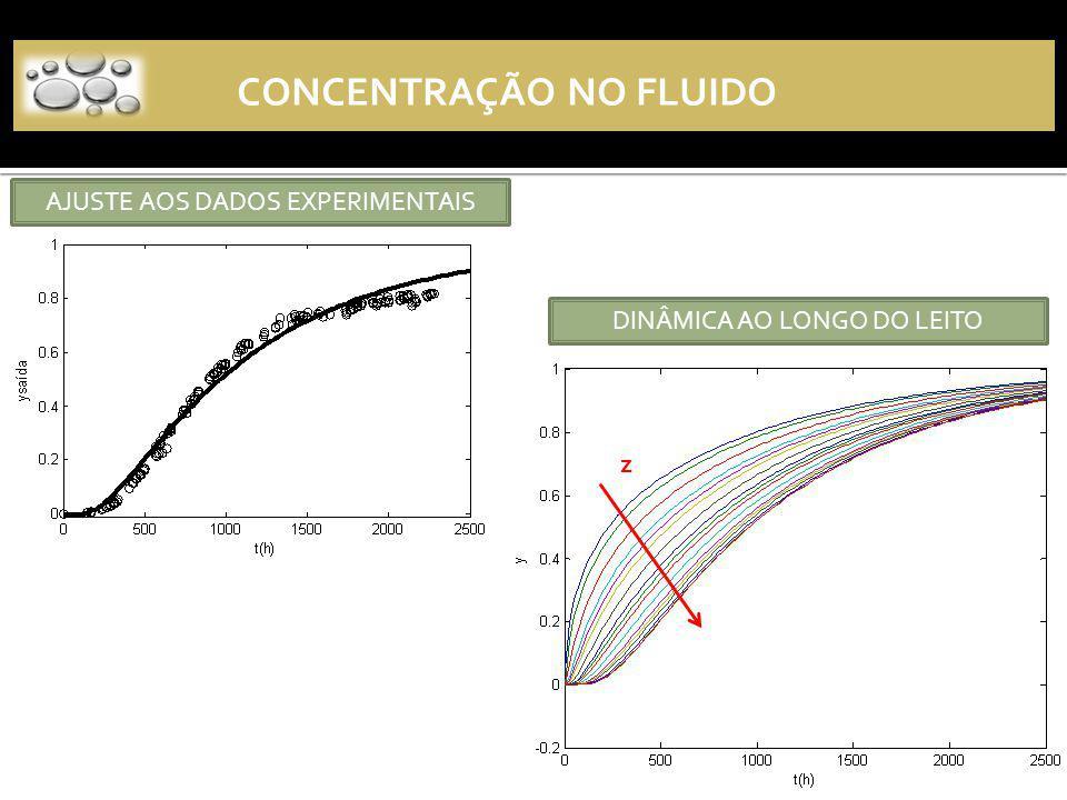 CONCENTRAÇÃO NO FLUIDO z AJUSTE AOS DADOS EXPERIMENTAIS DINÂMICA AO LONGO DO LEITO