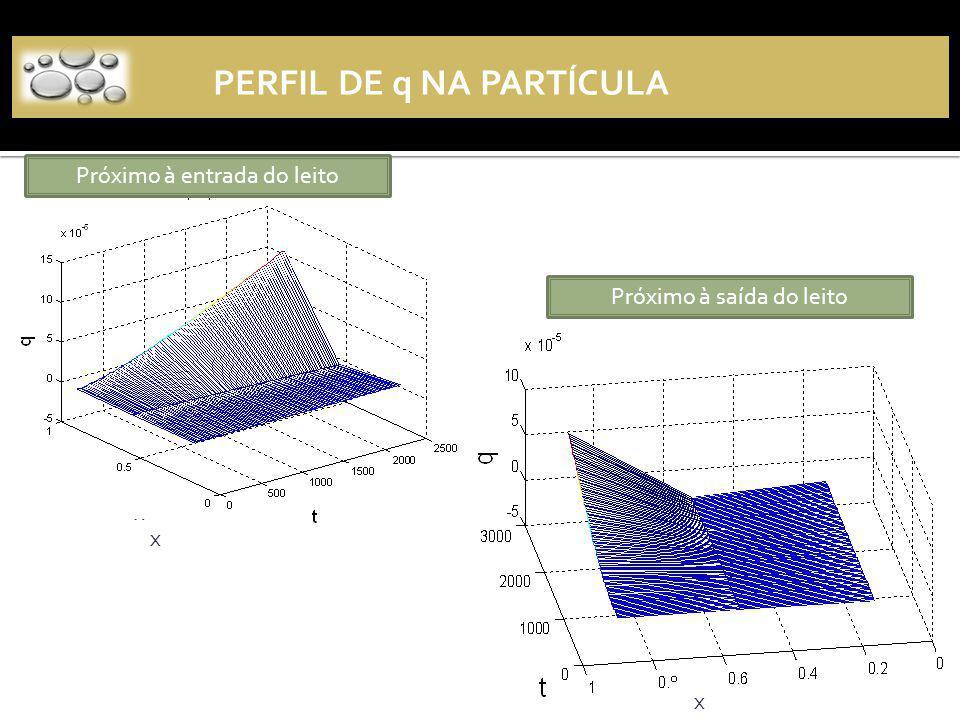 Próximo à entrada do leito Próximo à saída do leito PERFIL DE q NA PARTÍCULA x x x