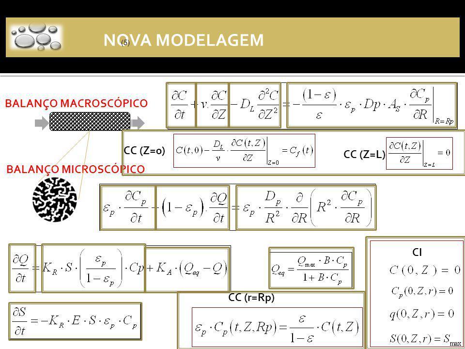 (2) BALANÇO MACROSCÓPICO BALANÇO MICROSCÓPICO NOVA MODELAGEM (5) CC (r=Rp) CC (Z=0) CI CC (Z=L)