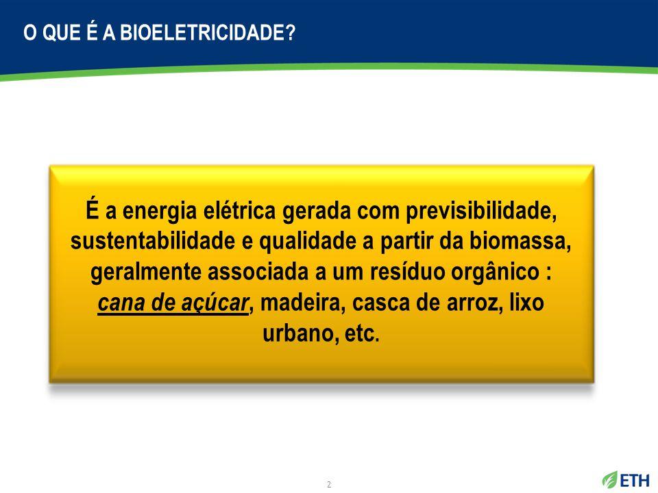 2 O QUE É A BIOELETRICIDADE? É a energia elétrica gerada com previsibilidade, sustentabilidade e qualidade a partir da biomassa, geralmente associada