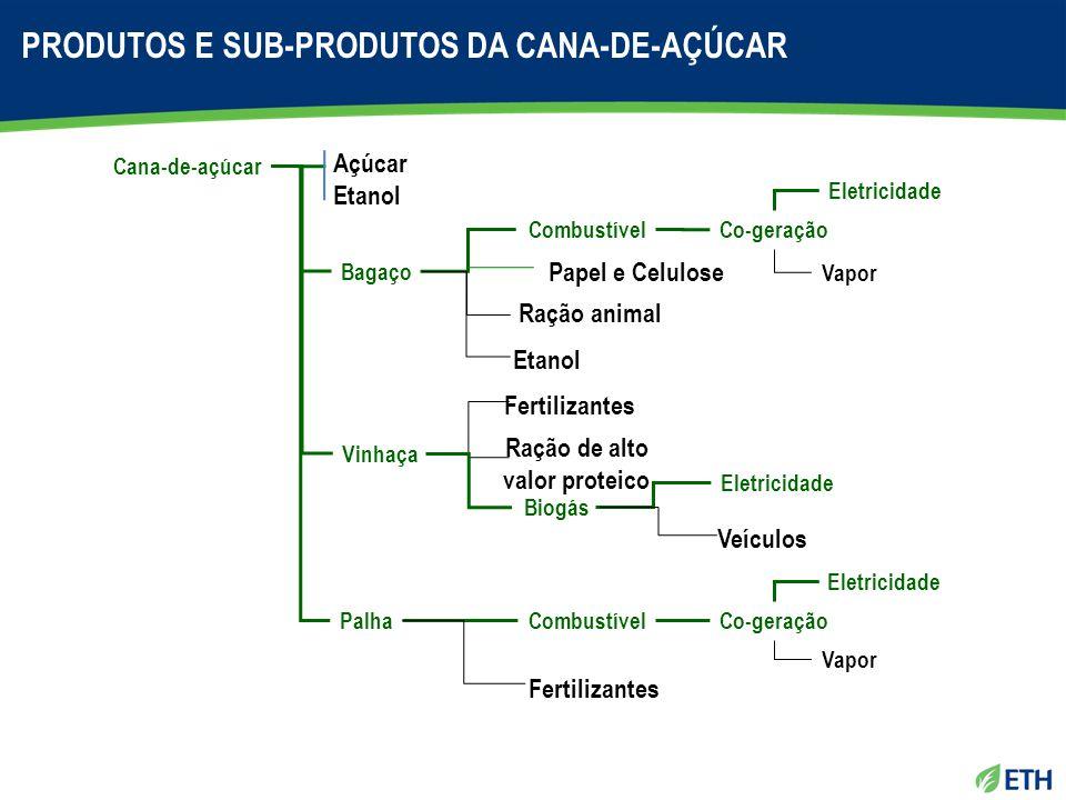 Cana-de-açúcar Bagaço Palha Açúcar Etanol Vinhaça Combustível Papel e Celulose Ração animal Etanol Eletricidade Vapor Co-geração Fertilizantes Biogás