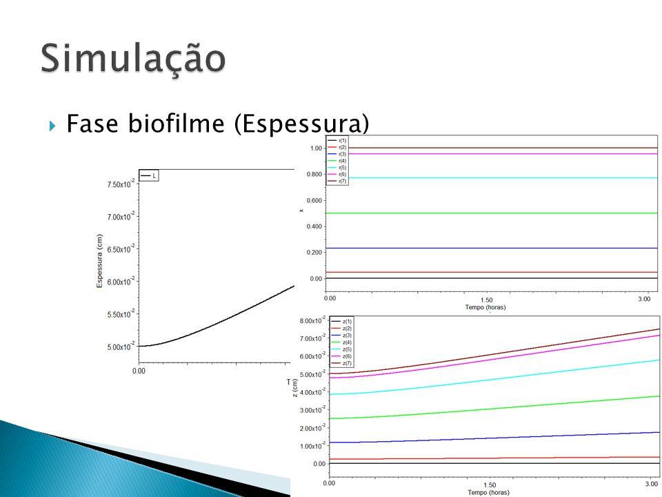 Fase biofilme (Espessura)