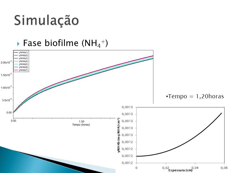 Fase biofilme (NH 4 + ) Tempo = 1,20horas