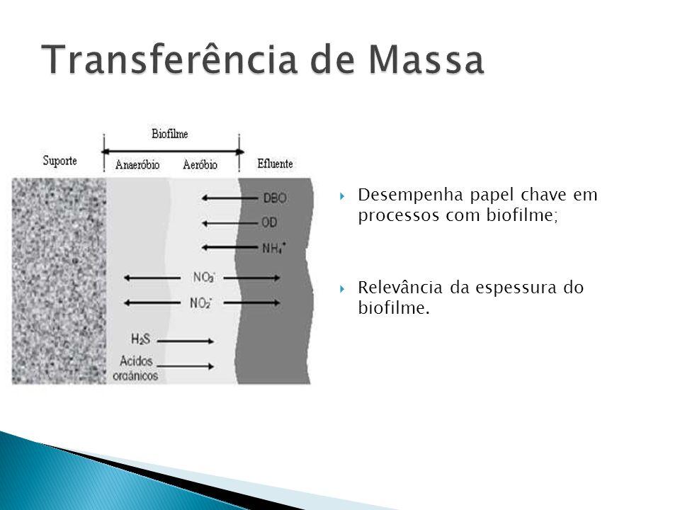 Fase biofilme (DQO) Tempo = 1,20horas