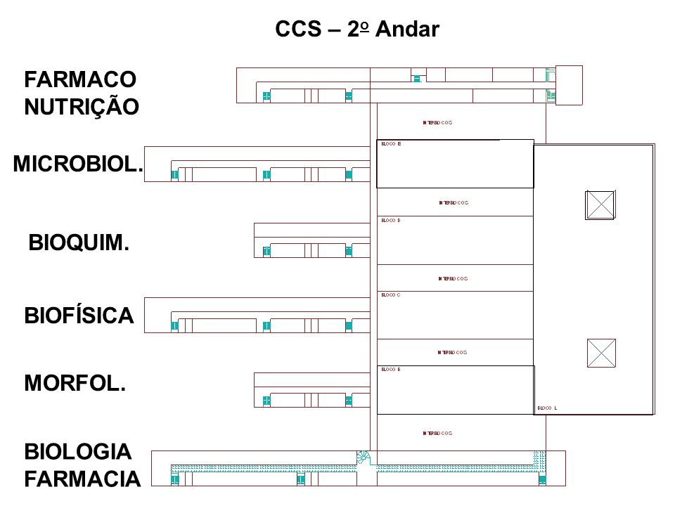 CCS Básicas 3-D Sub-Solo 1 o Andar (Térreo) 2 o Andar Atual Circulação Carga-Descarga Proposta de Circulação Coberta (Piso do 2 o Andar) Possível Elevador Monta-Carga.