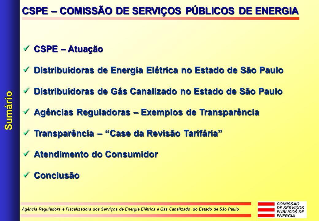 Agência Reguladora e Fiscalizadora dos Serviços de Energia Elétrica e Gás Canalizado do Estado de São Paulo CSPE – Atuação CSPE – Atuação Distribuidor