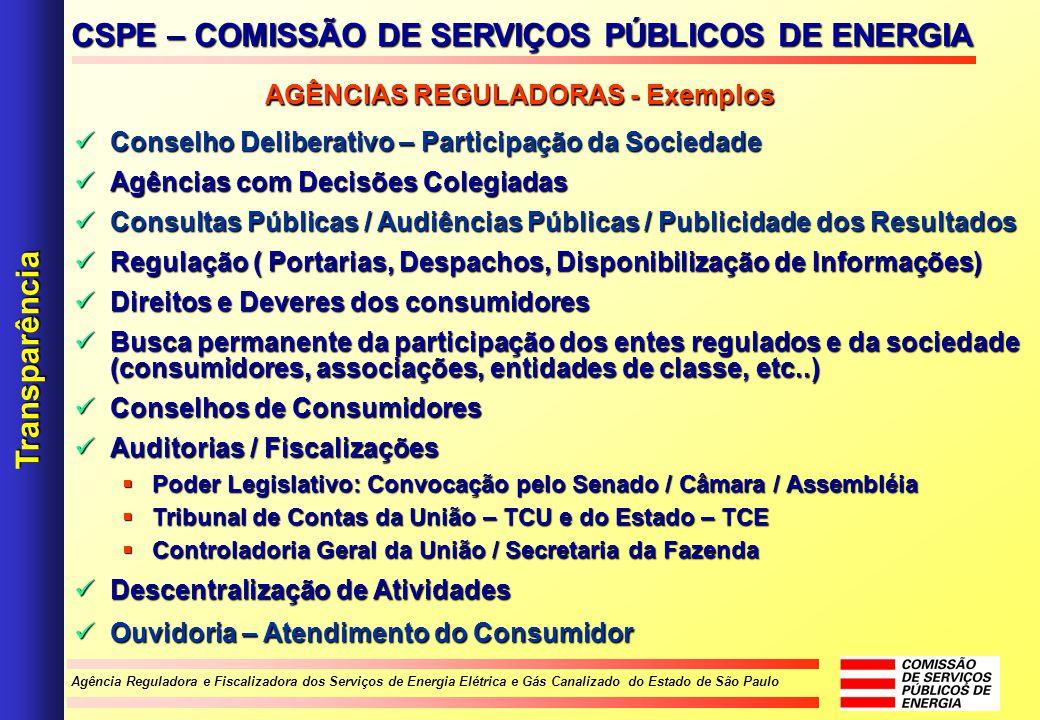 Agência Reguladora e Fiscalizadora dos Serviços de Energia Elétrica e Gás Canalizado do Estado de São Paulo Conselho Deliberativo – Participação da So