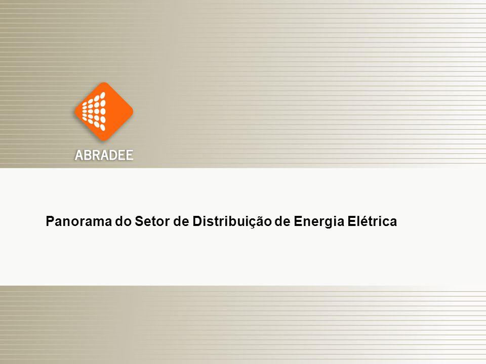 O Papel das Distribuidoras de Energia Elétrica 3 Panorama do Setor de Distribuição de Energia Elétrica