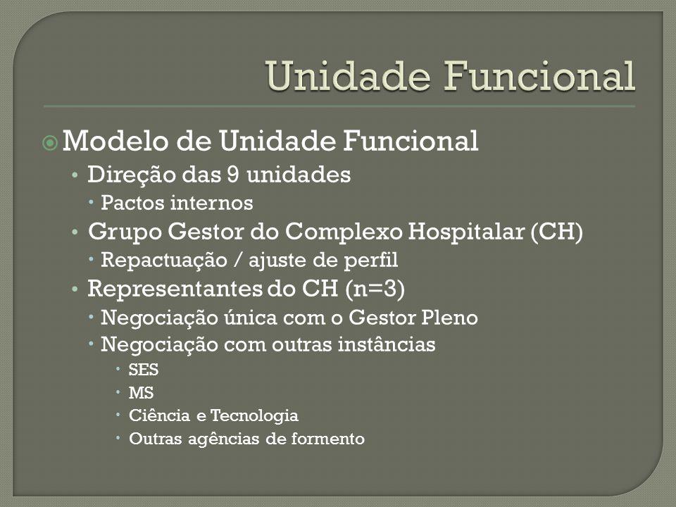 Modelo de Unidade Funcional Direção das 9 unidades Pactos internos Grupo Gestor do Complexo Hospitalar (CH) Repactuação / ajuste de perfil Representan