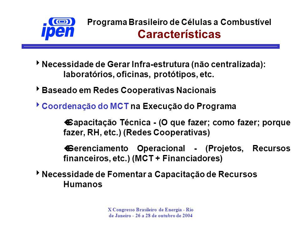 X Congresso Brasileiro de Energia - Rio de Janeiro - 26 a 28 de outubro de 2004 Programa Brasileiro de Células a Combustível Características Necessidade de Gerar Infra-estrutura (não centralizada): laboratórios, oficinas, protótipos, etc.