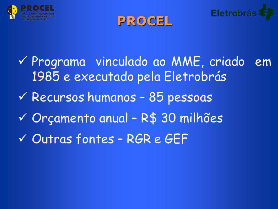 Programa vinculado ao MME, criado em 1985 e executado pela Eletrobrás Recursos humanos – 85 pessoas Orçamento anual – R$ 30 milhões Outras fontes – RGR e GEF PROCEL Eletrobrás