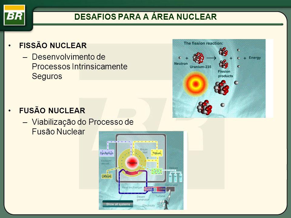 DESAFIOS PARA A ÁREA NUCLEAR FISSÃO NUCLEAR –Desenvolvimento de Processos Intrinsicamente Seguros FUSÃO NUCLEAR –Viabilização do Processo de Fusão Nuc