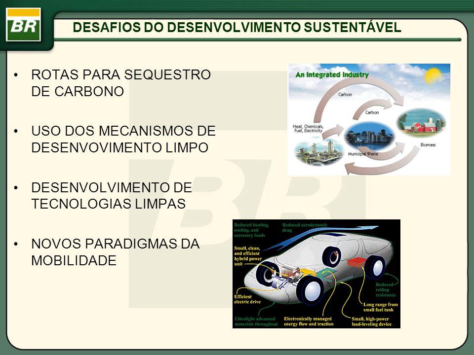 DESAFIOS DO DESENVOLVIMENTO SUSTENTÁVEL ROTAS PARA SEQUESTRO DE CARBONO USO DOS MECANISMOS DE DESENVOVIMENTO LIMPO DESENVOLVIMENTO DE TECNOLOGIAS LIMP
