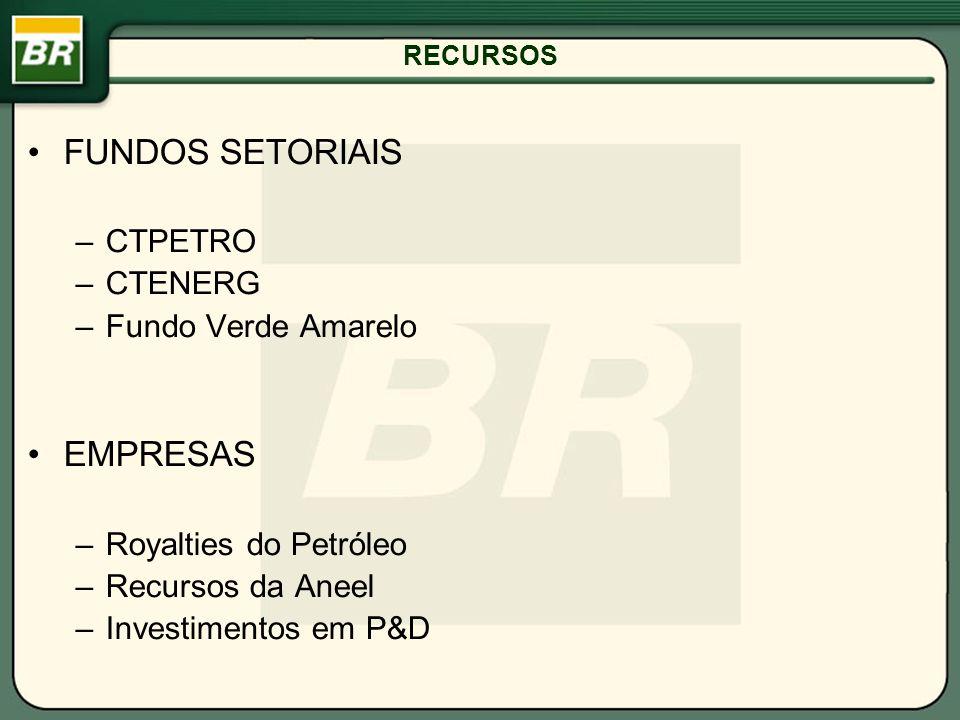 RECURSOS FUNDOS SETORIAIS –CTPETRO –CTENERG –Fundo Verde Amarelo EMPRESAS –Royalties do Petróleo –Recursos da Aneel –Investimentos em P&D