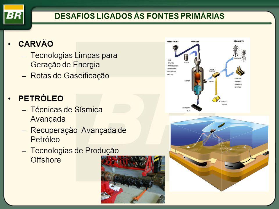 DESAFIOS LIGADOS ÀS FONTES PRIMÁRIAS CARVÃO –Tecnologias Limpas para Geração de Energia –Rotas de Gaseificação PETRÓLEO –Técnicas de Sísmica Avançada