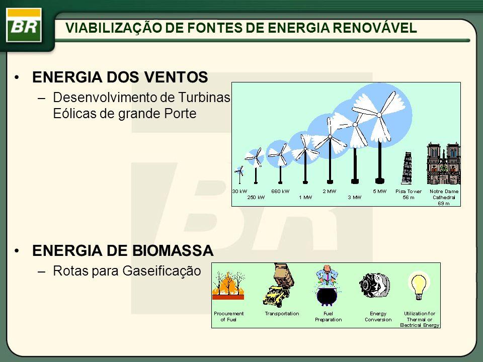 VIABILIZAÇÃO DE FONTES DE ENERGIA RENOVÁVEL ENERGIA DOS VENTOS –Desenvolvimento de Turbinas Eólicas de grande Porte ENERGIA DE BIOMASSA –Rotas para Ga