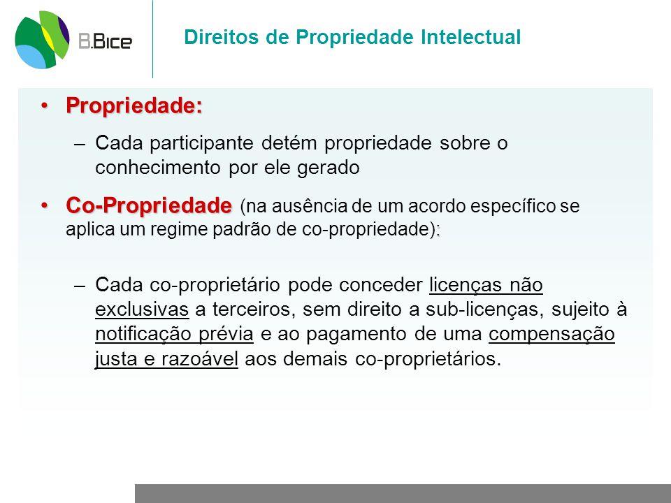 Direitos de Propriedade Intelectual Propriedade:Propriedade: –Cada participante detém propriedade sobre o conhecimento por ele gerado Co-Propriedade :
