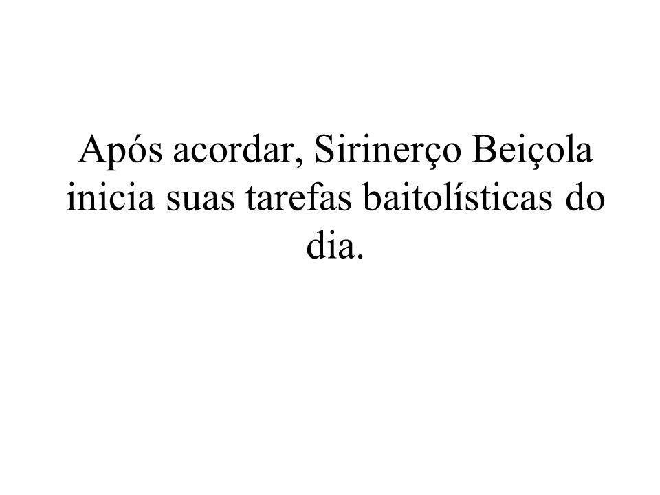 Após acordar, Sirinerço Beiçola inicia suas tarefas baitolísticas do dia.