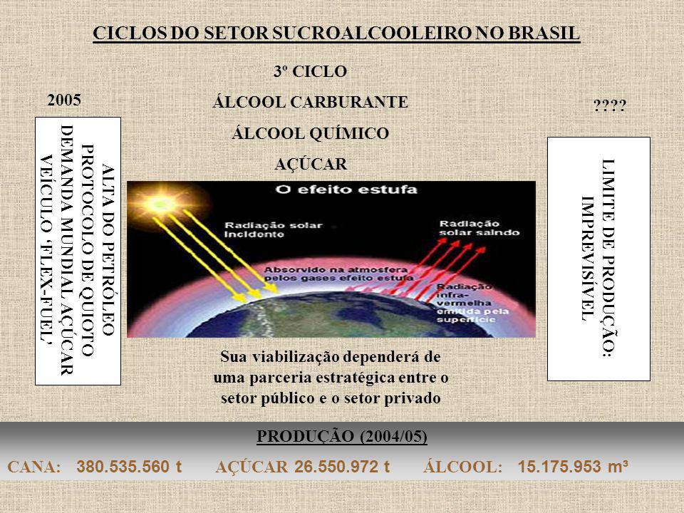 CICLOS DO SETOR SUCROALCOOLEIRO NO BRASIL 2005 PRODUÇÃO (2004/05) CANA: 380.535.560 t AÇÚCAR 26.550.972 t ÁLCOOL: 15.175.953 m³ 3º CICLO ÁLCOOL CARBUR
