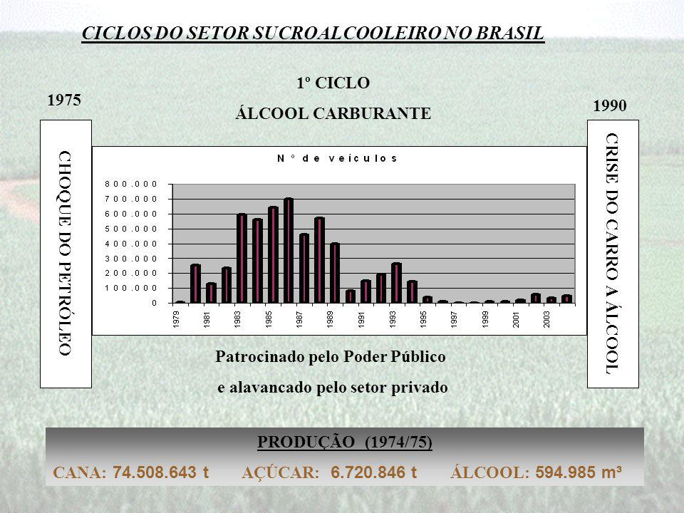 CICLOS DO SETOR SUCROALCOOLEIRO NO BRASIL CHOQUE DO PETRÓLEO 1975 1º CICLO ÁLCOOL CARBURANTE Patrocinado pelo Poder Público e alavancado pelo setor privado CRISE DO CARRO A ÁLCOOL 1990 PRODUÇÃO (1974/75) CANA: 74.508.643 t AÇÚCAR: 6.720.846 t ÁLCOOL: 594.985 m³