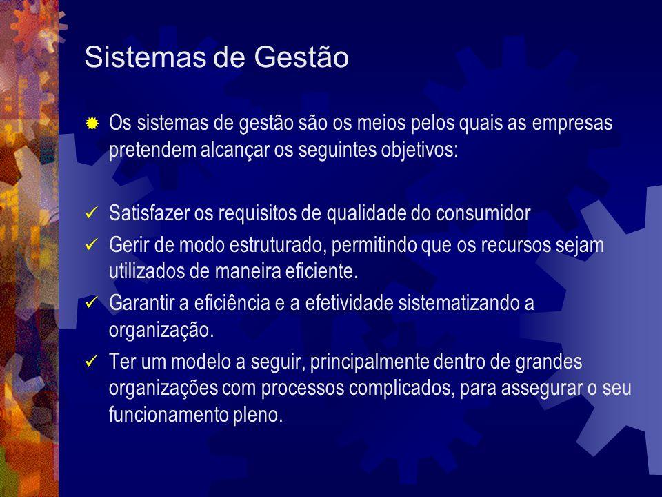 Sistemas de Gestão Os sistemas de gestão são os meios pelos quais as empresas pretendem alcançar os seguintes objetivos: Satisfazer os requisitos de q