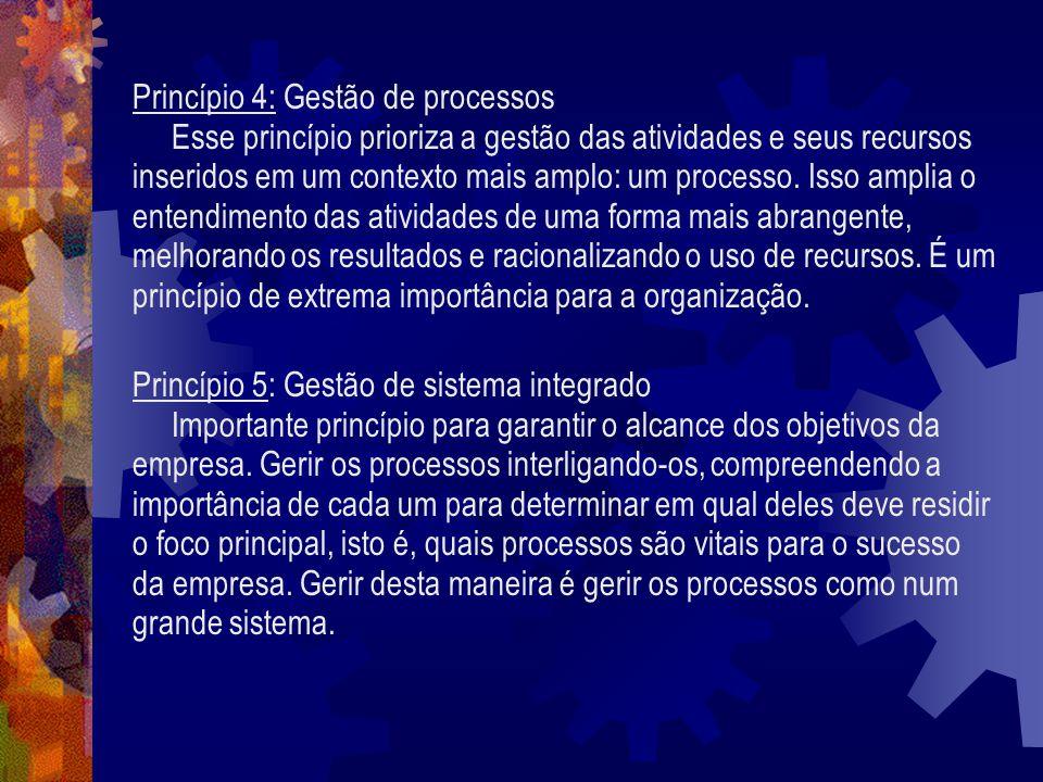 Princípio 4: Gestão de processos Esse princípio prioriza a gestão das atividades e seus recursos inseridos em um contexto mais amplo: um processo. Iss
