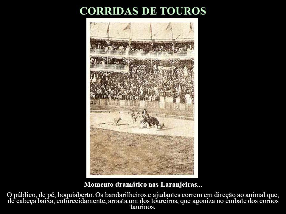 CORRIDAS DE TOUROS O Decreto n.