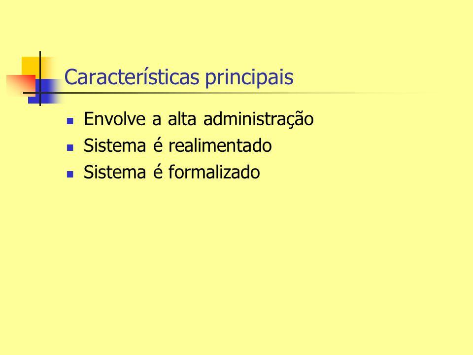 Características principais Envolve a alta administração Sistema é realimentado Sistema é formalizado