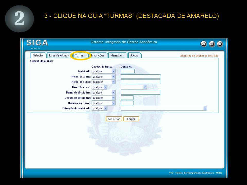 3 - CLIQUE NA GUIA TURMAS (DESTACADA DE AMARELO)