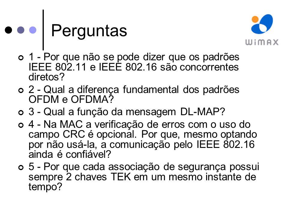 Perguntas 1 - Por que não se pode dizer que os padrões IEEE 802.11 e IEEE 802.16 são concorrentes diretos.