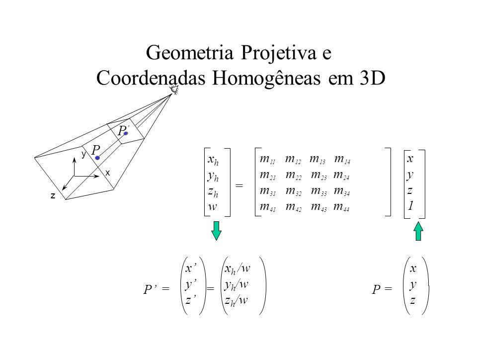 Geometria Projetiva e Coordenadas Homogêneas em 3D xhyhzhwxhyhzhw xyz1xyz1 m 11 m 12 m 13 m 14 m 21 m 22 m 23 m 24 m 31 m 32 m 33 m 34 m 41 m 42 m 43 m 44 = P P z x y P xyzxyz = P = xyzxyz x h /w y h /w z h /w =
