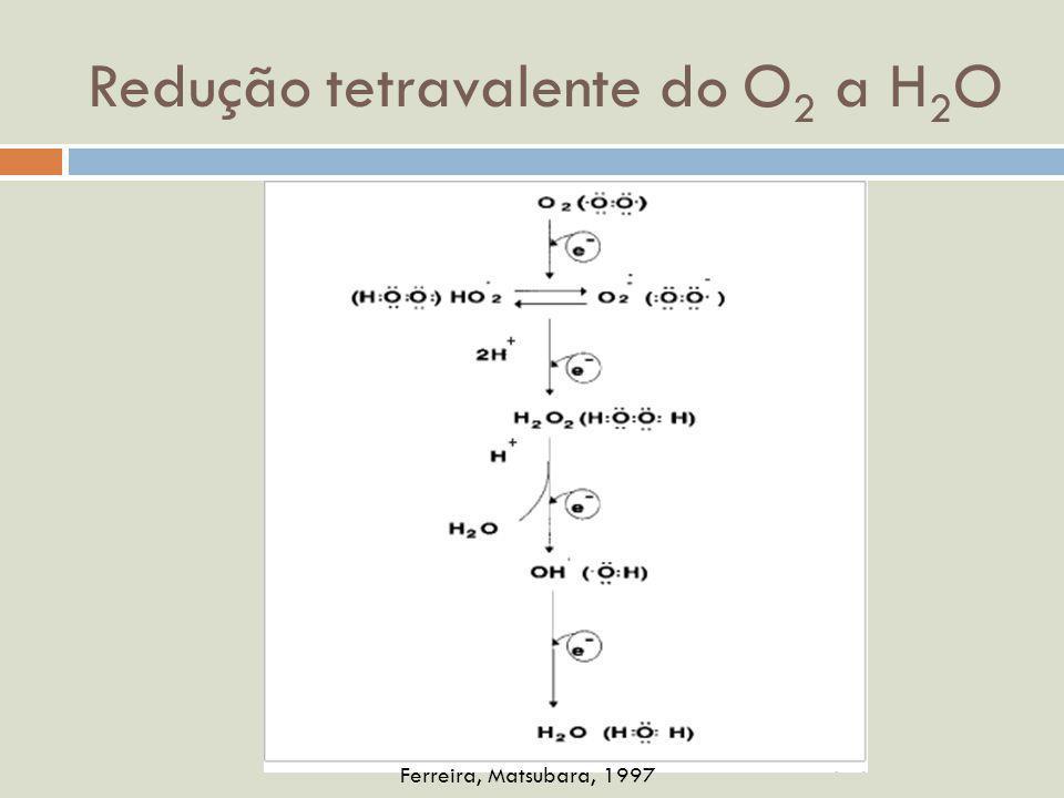 Adaptado de Finkel e Holbrook, 2000 P OR QUE EXISTEM MECANISMOS DE DEFESA CONTRA ERO S ??.