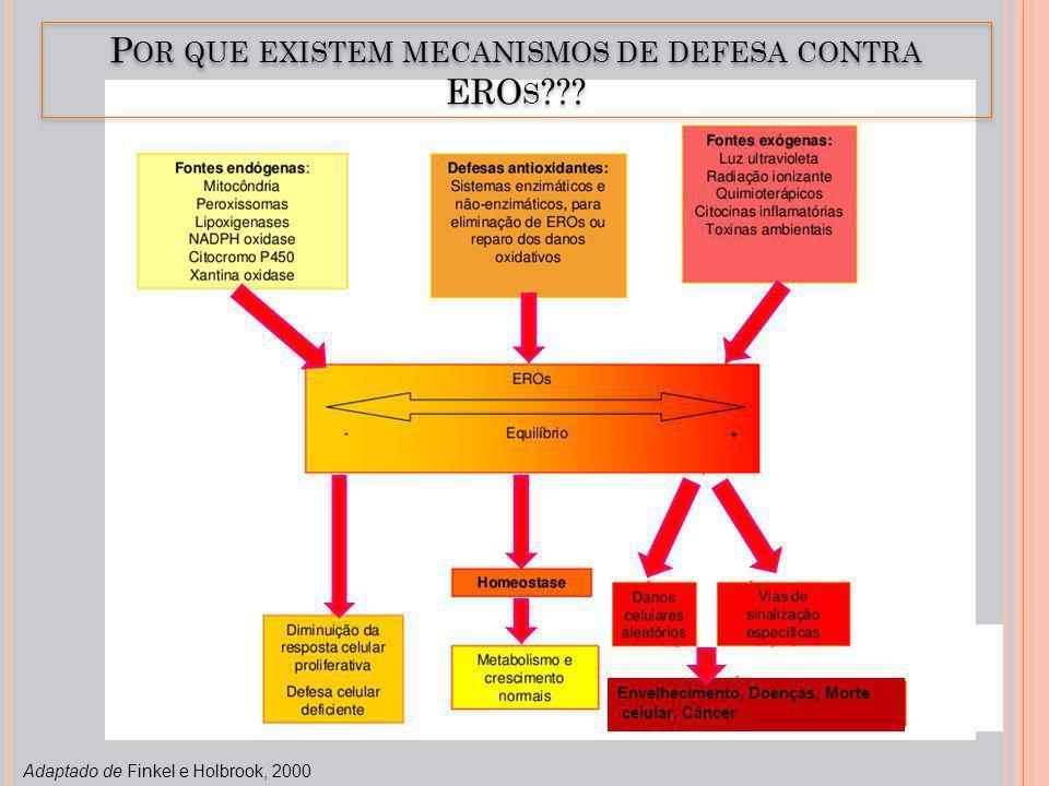 Adaptado de Finkel e Holbrook, 2000 P OR QUE EXISTEM MECANISMOS DE DEFESA CONTRA ERO S ??? Envelhecimento, Doenças, Morte celular, Câncer