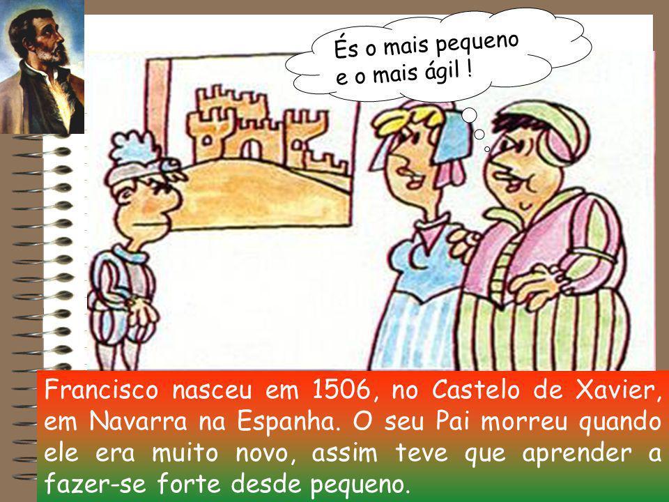 Francisco nasceu em 1506, no Castelo de Xavier, em Navarra na Espanha.