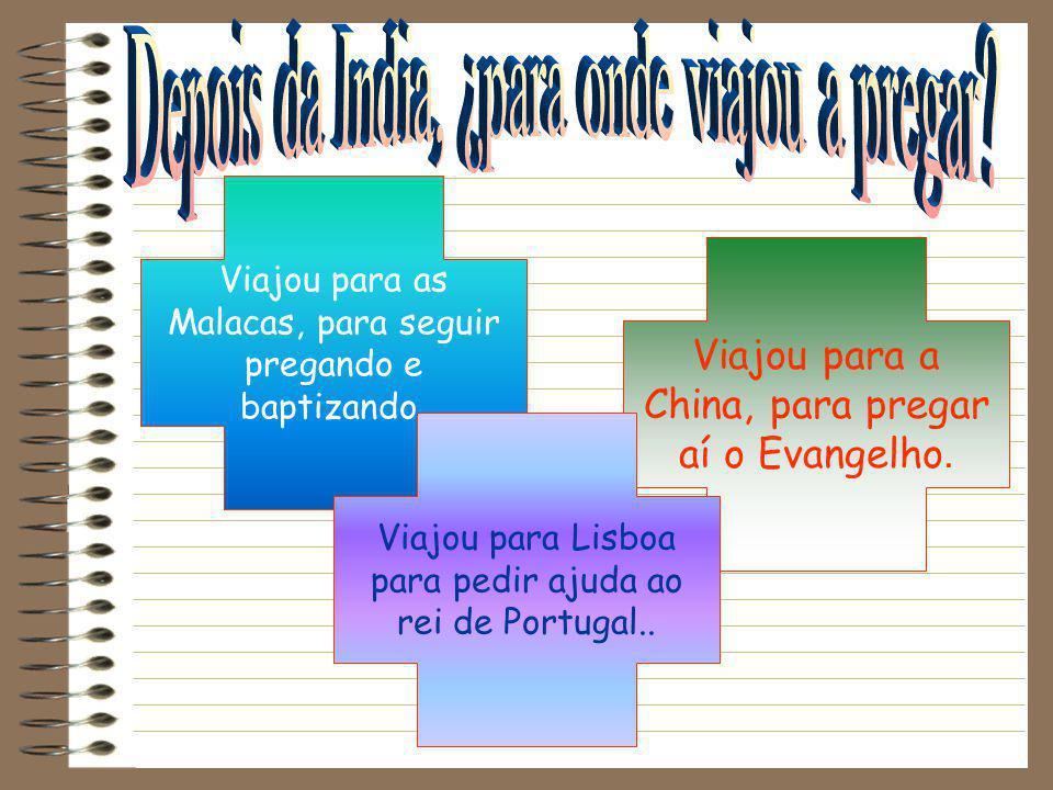 Xavier trabalhou com as crianças e doentes. Xavier trabalhou com os sacerdotes hindus. Xavier trabalhou com os soldados portugueses.