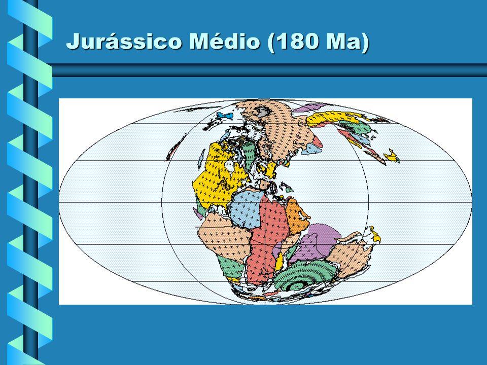 Jurássico Inferior (190 Ma)