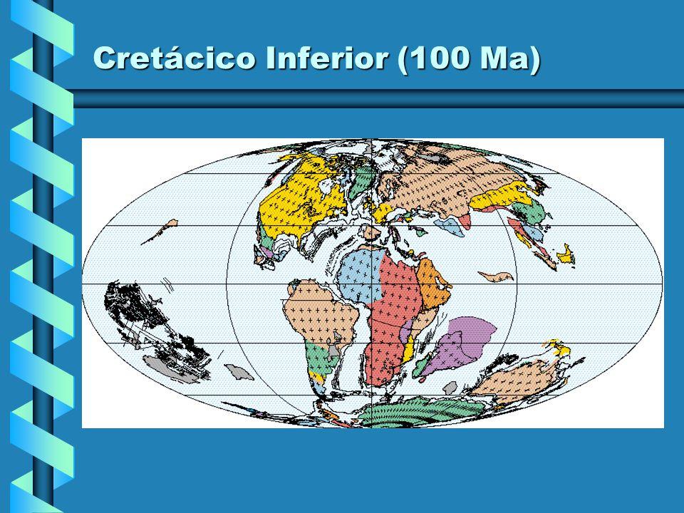 Cretácico Inferior (110 Ma)