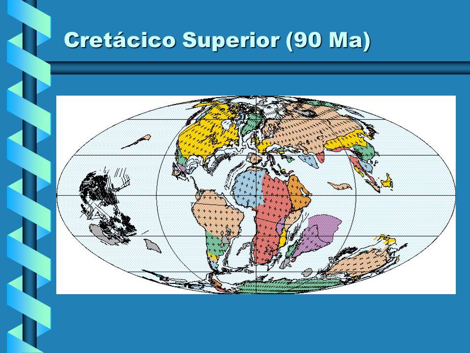 Cretácico Inferior (100 Ma)