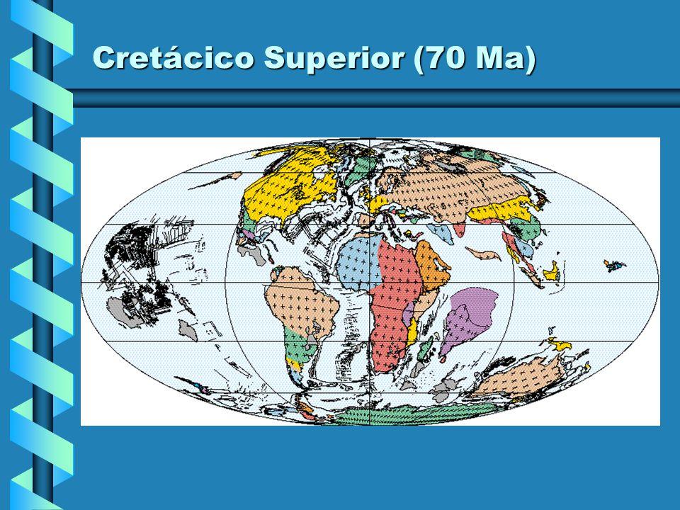 Cretácico Superior (80 Ma)