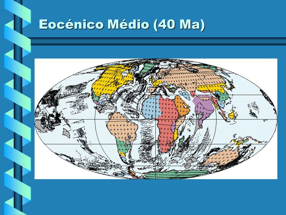 Eocénico Inferior (50 Ma)