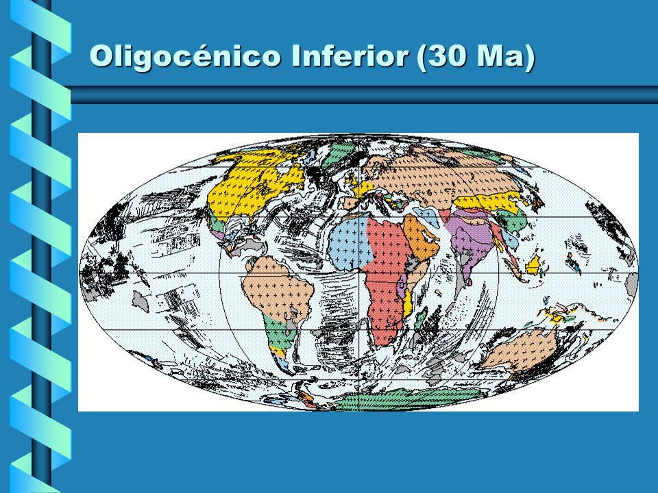Eocénico Médio (40 Ma)