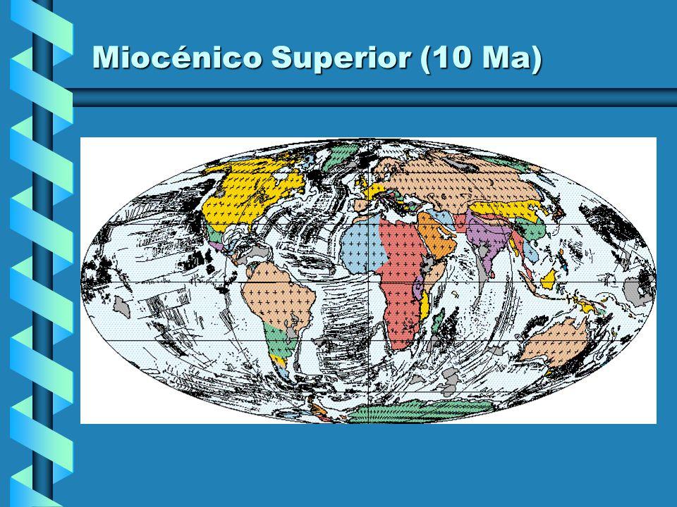 Miocénico Inferior (20 Ma)